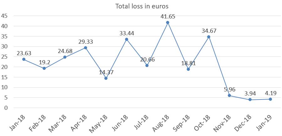 Total loss in euros in january 2019 portfolio update